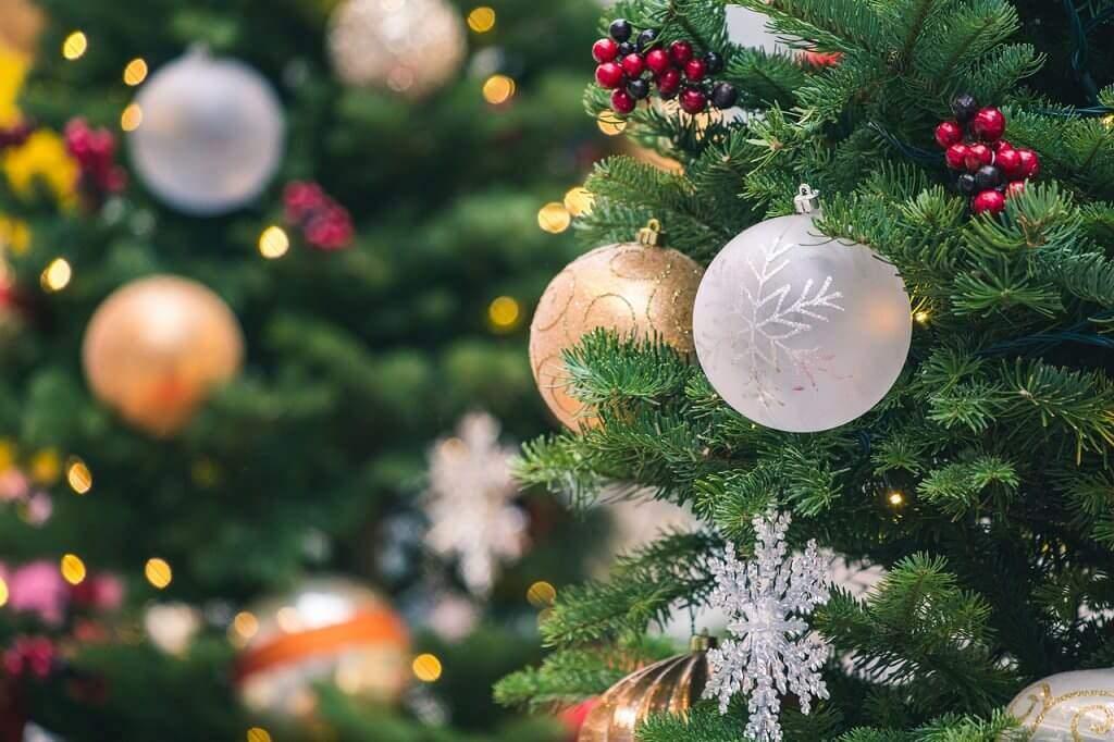 Weihnachtsbaum kaufen